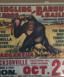 Gargantua The Big Ape Ringling Bros Barnum Bailey Poster